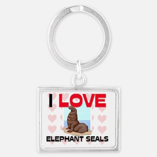 ELEPHANT-SEALS136287 Landscape Keychain