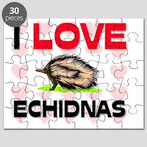 ECHIDNAS101289 Puzzle