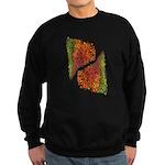Paths of Color [R.O.G.] Sweatshirt (dark)