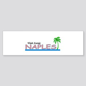 Visit Scenic Naples, Florida Bumper Sticker
