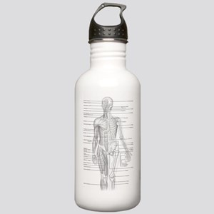 Human Anatomy Chart Stainless Water Bottle 1.0L