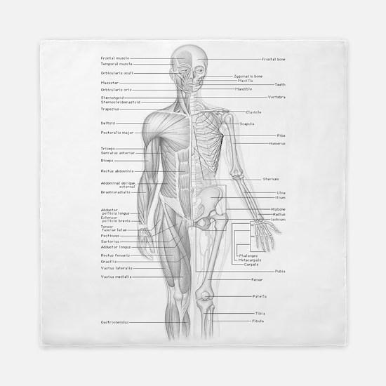 Human Anatomy Chart Queen Duvet