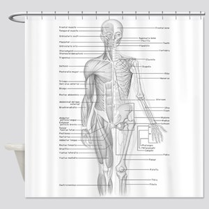 Human Anatomy Chart Shower Curtain