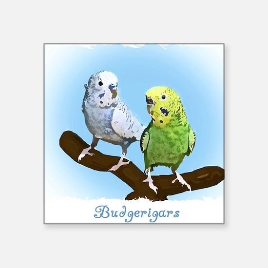 "budgies_shirt Square Sticker 3"" x 3"""