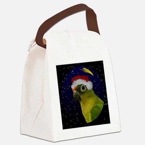 christmasnight_peachfrontconure Canvas Lunch Bag