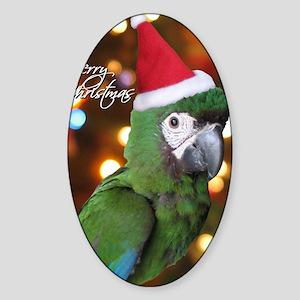severemacaw_santa_card Sticker (Oval)