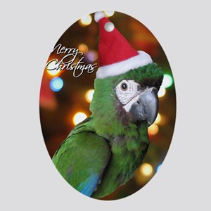 severemacaw_santa_card Oval Ornament