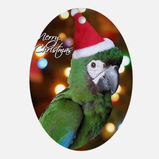 severemacaw_santa_card Oval Ornament