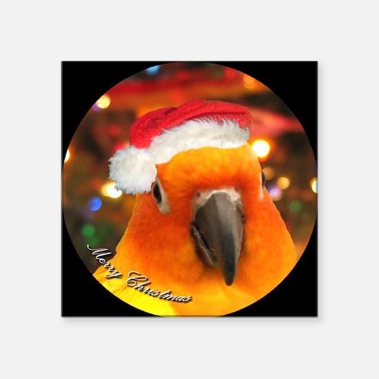 """3-christmas_sunconure_ornam Square Sticker 3"""" x 3"""""""