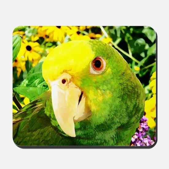 gonzo_garden_card Mousepad