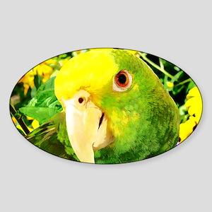 gonzo_garden_card Sticker (Oval)