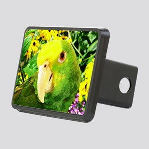 gonzo_garden_card Rectangular Hitch Cover
