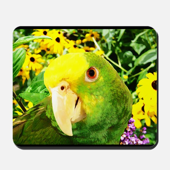 gonzo_garden_poster Mousepad