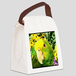 gonzo_garden_poster Canvas Lunch Bag