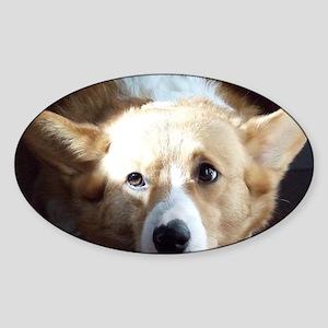 pembroke_thinkingofyou Sticker (Oval)