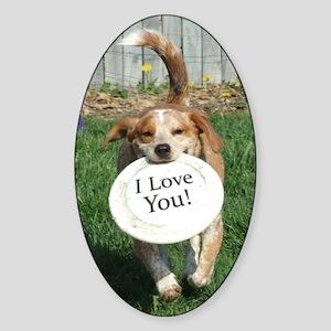 popper_iloveyou Sticker (Oval)