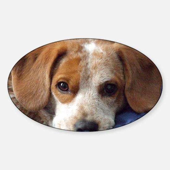 popper_thinkingofyou Sticker (Oval)