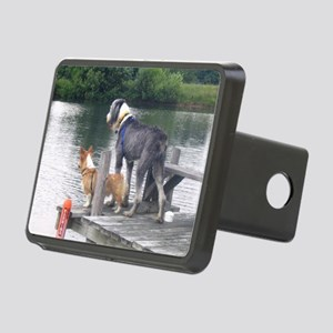 dockdogs Rectangular Hitch Cover