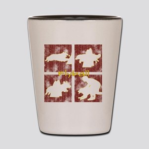 redboxes_flyball Shot Glass