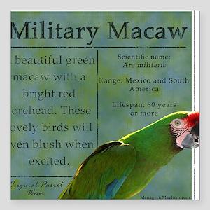 "military_parrotwear Square Car Magnet 3"" x 3"""