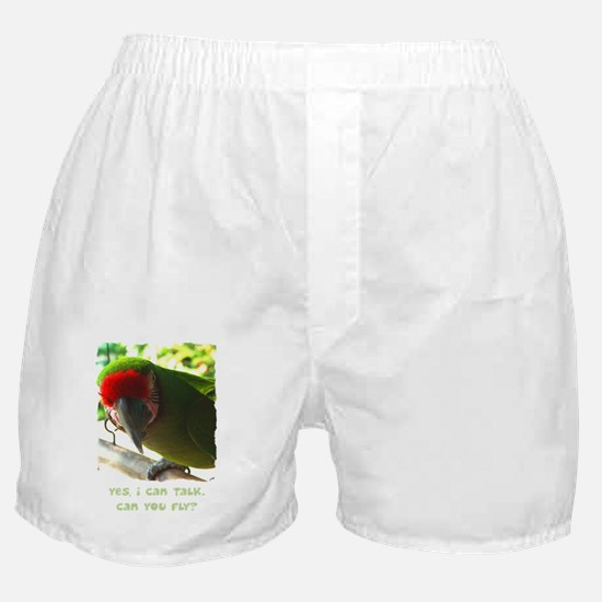 what_military_blk Boxer Shorts
