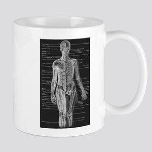 Human Anatomy Chart Mug