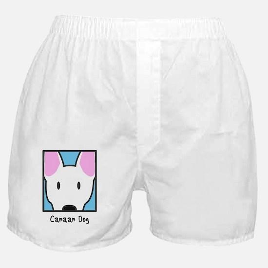 anime_canaan Boxer Shorts