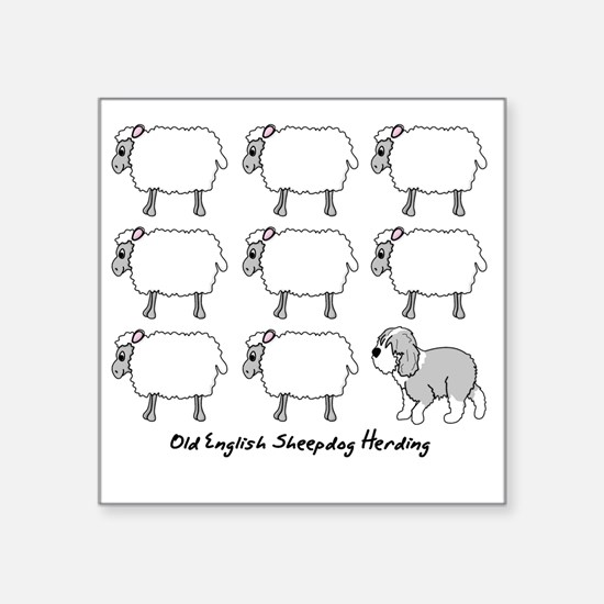 "oes_herding Square Sticker 3"" x 3"""