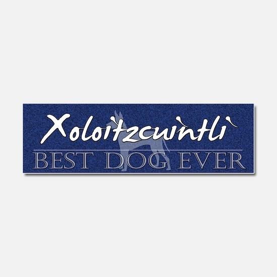 bestdog_xolo Car Magnet 10 x 3