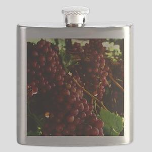 flame-seedless-grape1 Flask