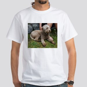 lagotto romagnolo laying T-Shirt