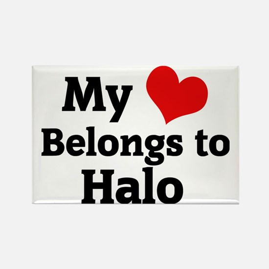 Halo Rectangle Magnet