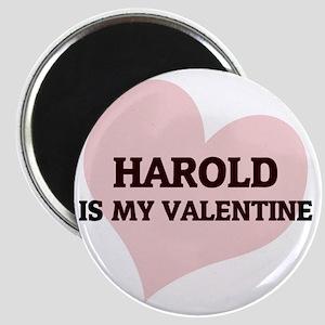 HAROLD Magnet