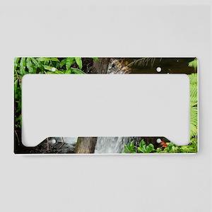 Tropical Stream License Plate Holder
