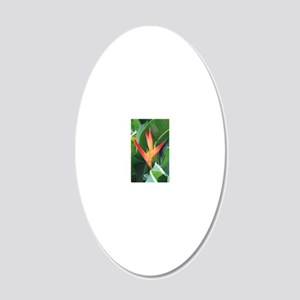 Bird of Paradise 20x12 Oval Wall Decal