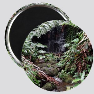 Rainforest Waterfall Magnet