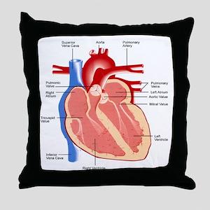 Human Heart Anatomy Throw Pillow