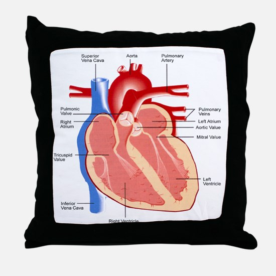 Human Heart Anatomy Throw Pillow