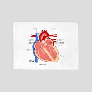 Human Heart Anatomy 5'x7'Area Rug
