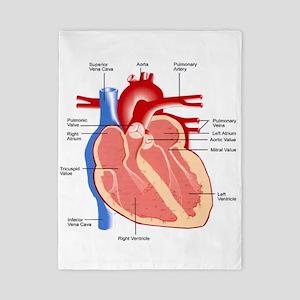Human Heart Anatomy Twin Duvet