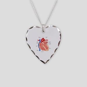 Human Heart Anatomy Necklace Heart Charm