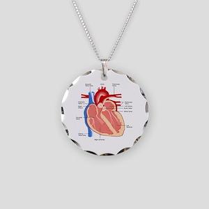 Human Heart Anatomy Necklace Circle Charm