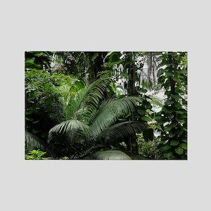 Tropical Rainforest Rectangle Magnet