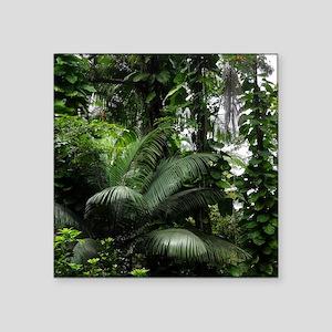 "Tropical Rainforest Square Sticker 3"" x 3"""