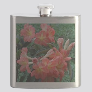 Rhododendrons Flask