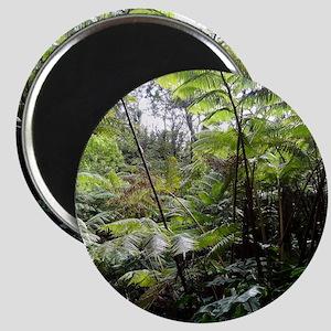 Tropical Jungle Magnet