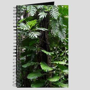 Tropical Rainforest03 Journal