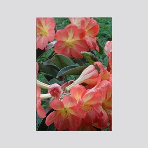 Rhododendrons Rectangle Magnet