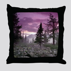 Beautiful Forest Landscape Throw Pillow