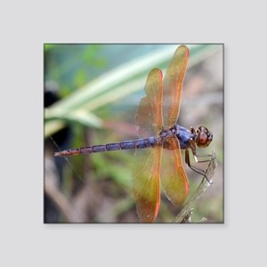 "Purple Skimmer Dragonfly Square Sticker 3"" x 3"""